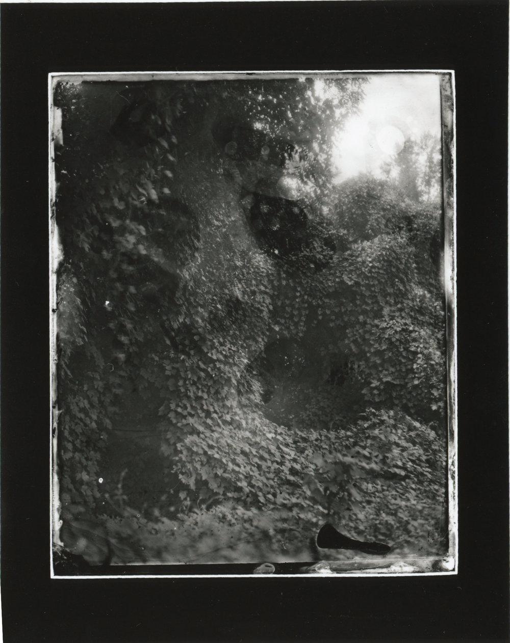 CollodionLandscapes-20.JPG