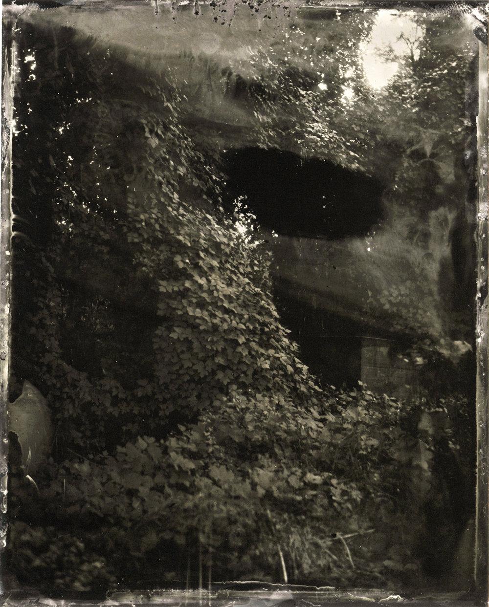 CollodionLandscapes-6.JPG