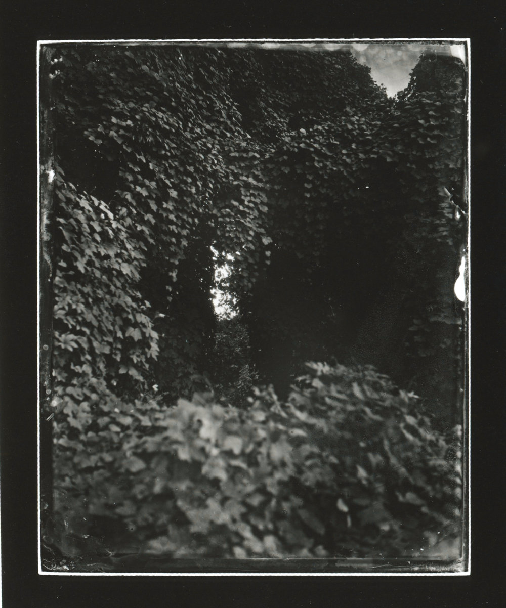 CollodionLandscapes-19.JPG