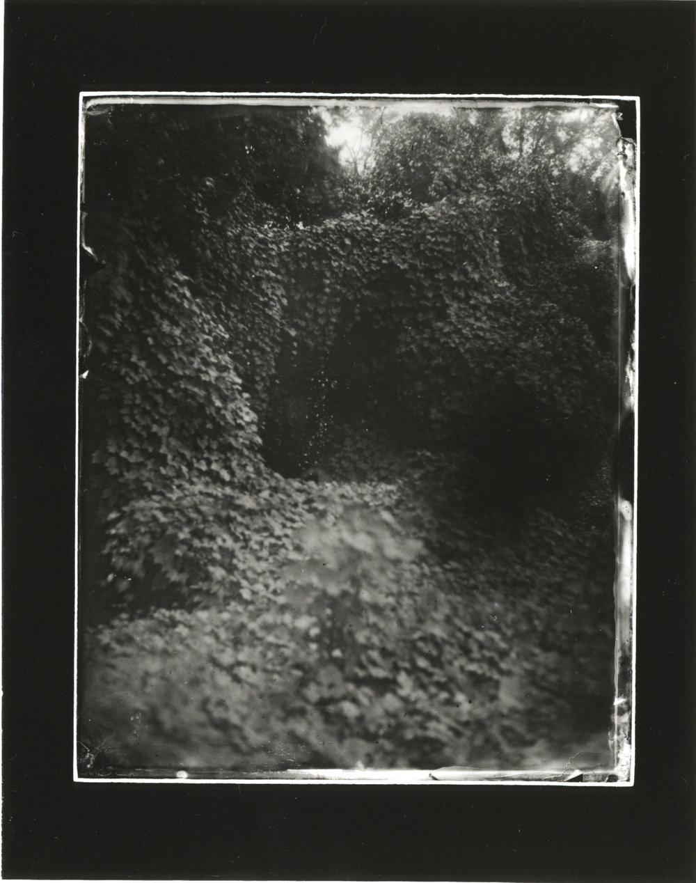 CollodionLandscapes-21.JPG