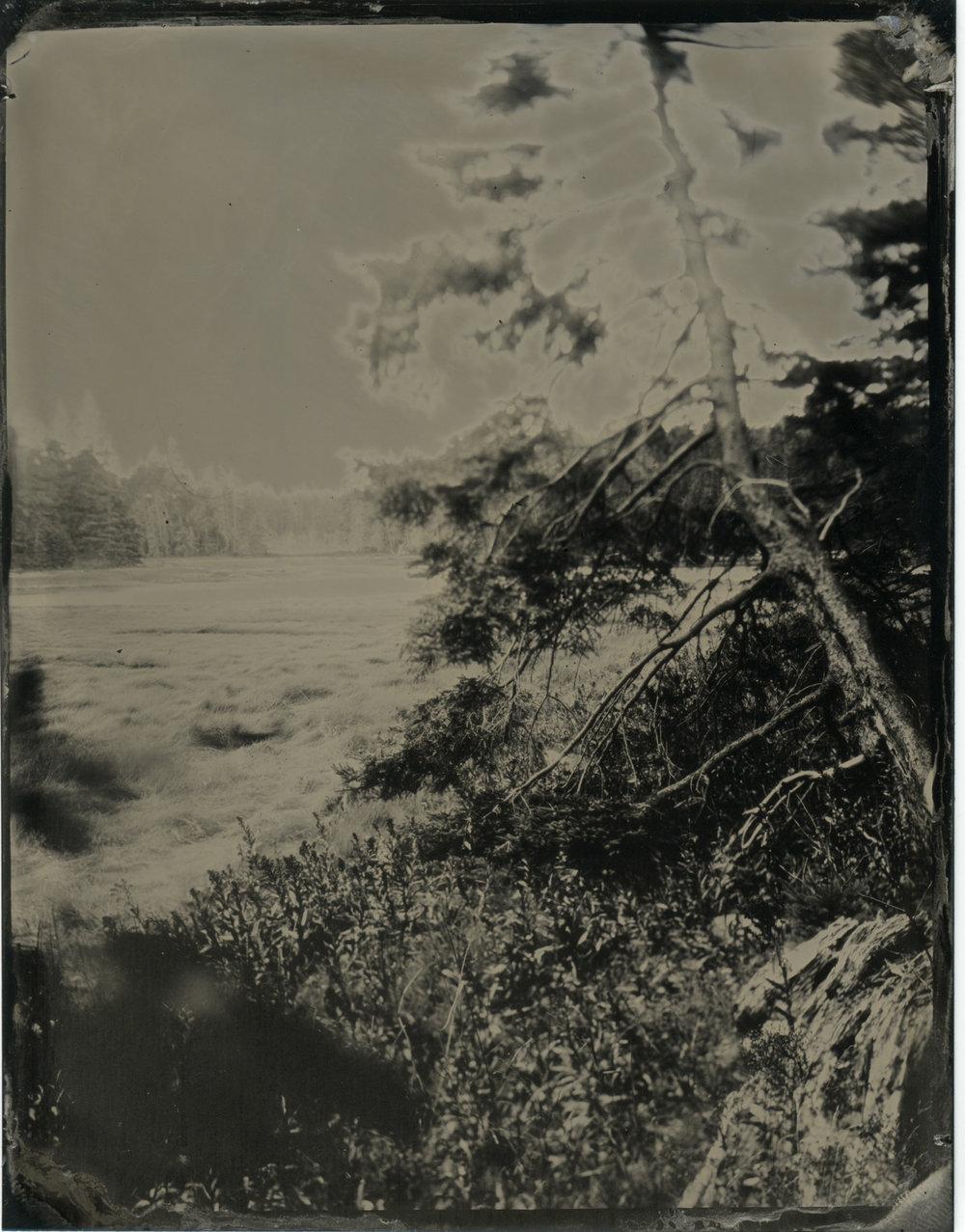 CollodionLandscapes-54.JPG