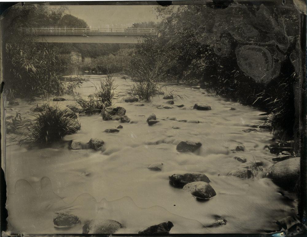 CollodionLandscapes-61.JPG