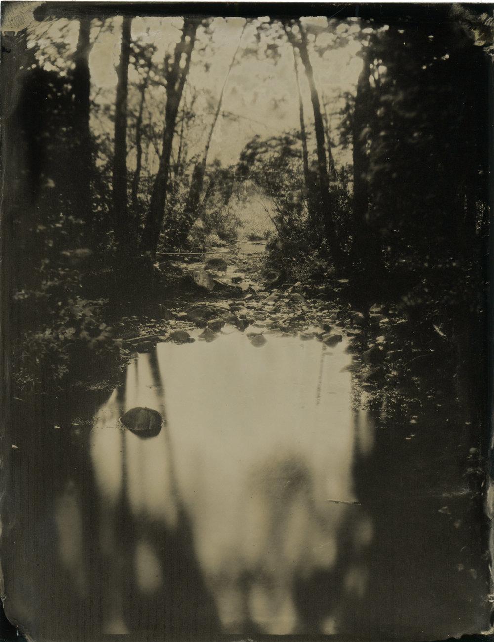 CollodionLandscapes-63.JPG