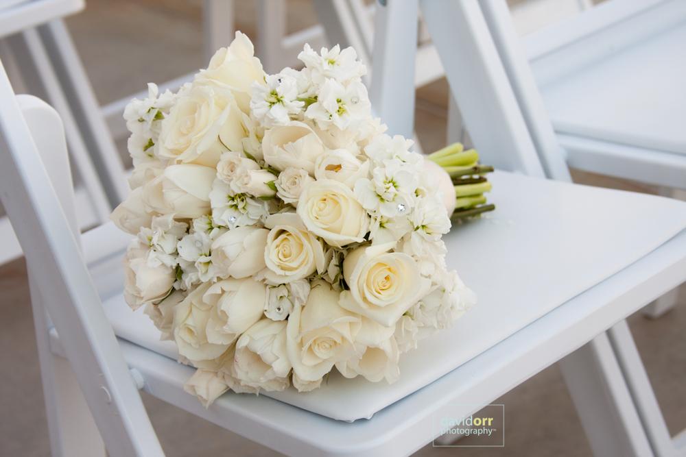 GingerJames_Wedding_Preview_IMG_1239.jpg