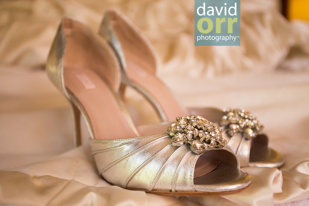 AliciaDaniel_Wedding_Preview_IMG_3944.jpg