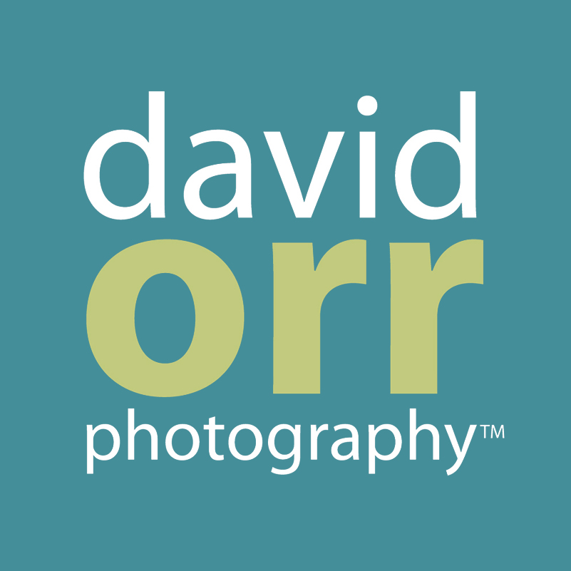 Phoenix Wedding Photographers – David Orr Photography
