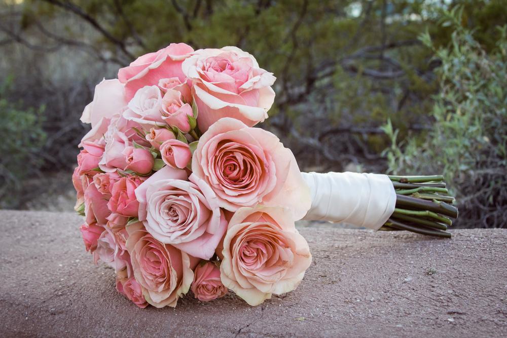 AmyRyan_Wedding_Regale_539.jpg
