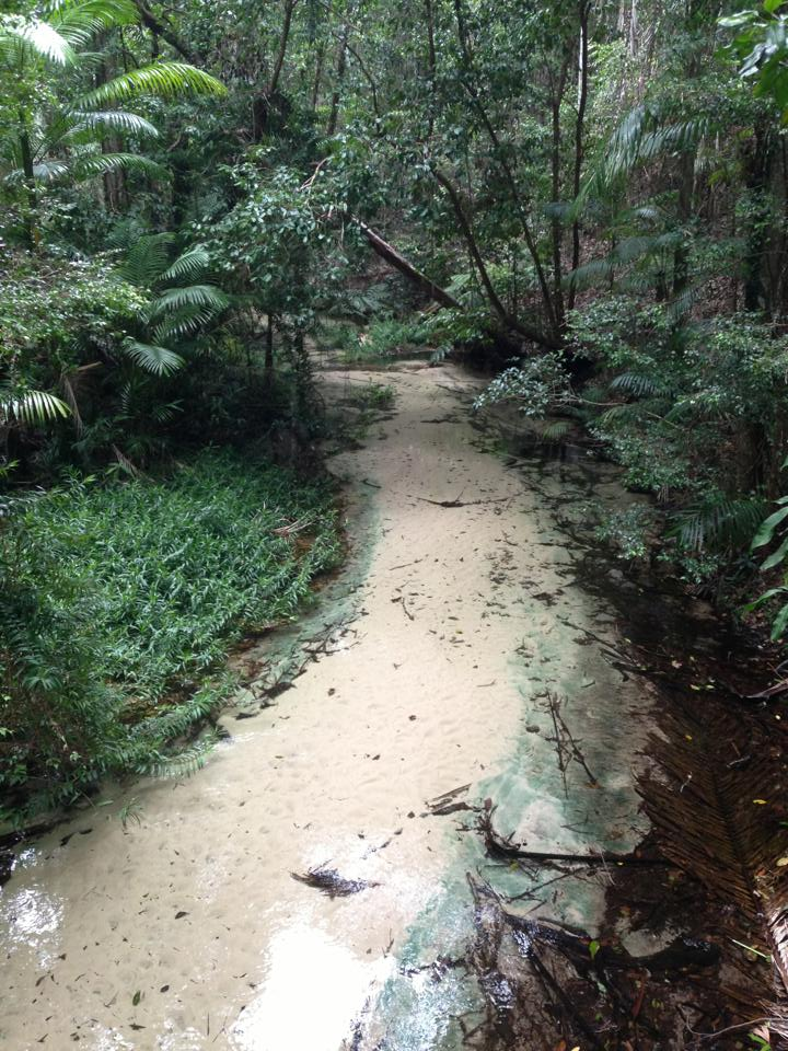 Fraser Island 4wd And Camping Guide Mud Map Blog