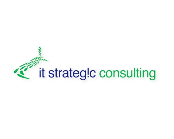 iTstrategic-wi copy.jpg
