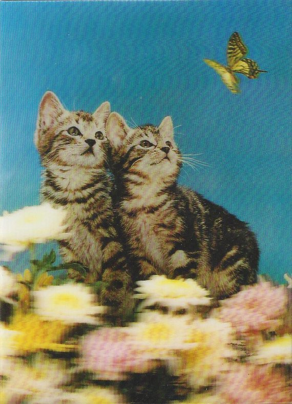 Because I love lenticular kittens!!