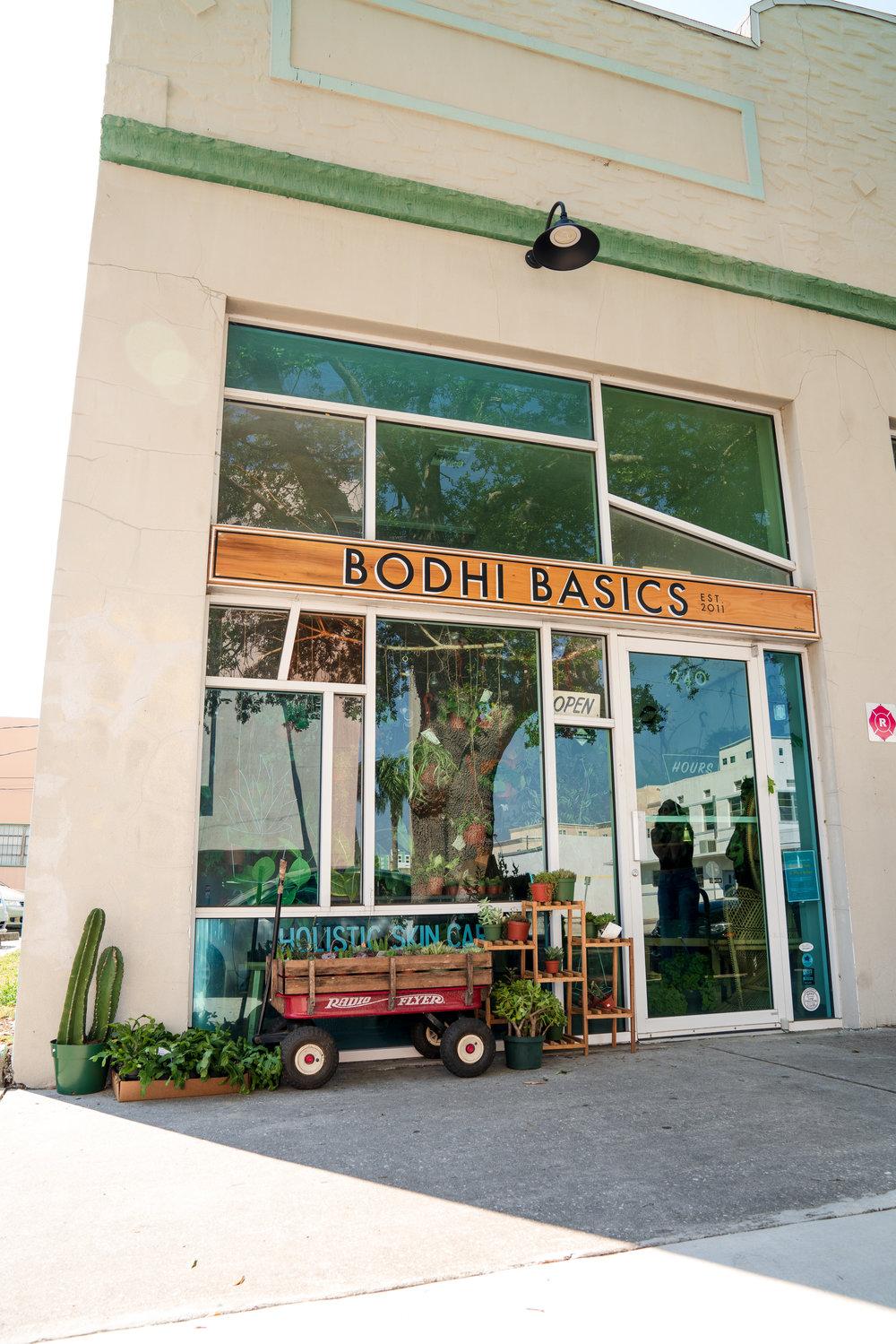 BodhiBasics.jpg
