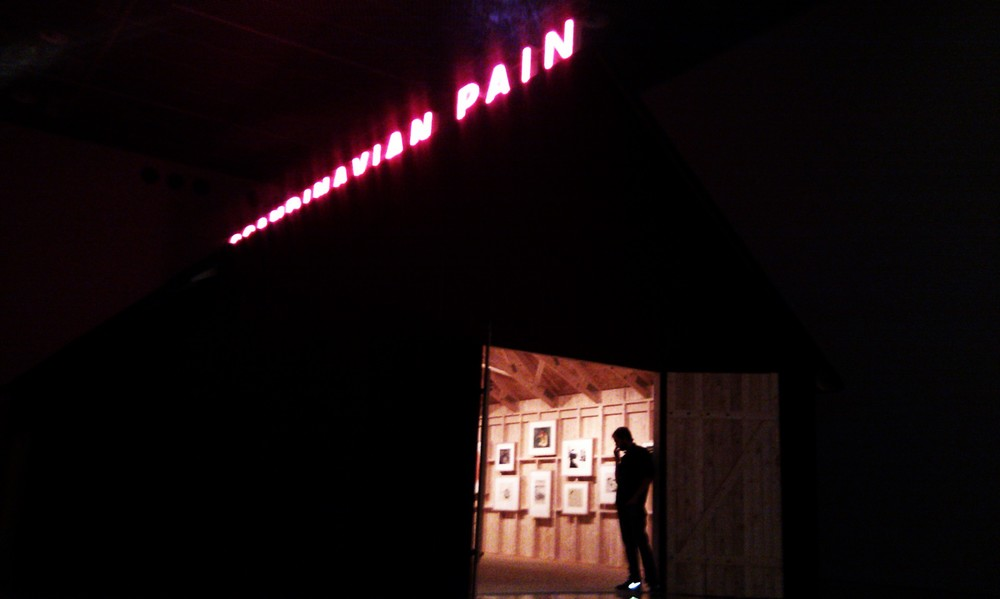 Scandinavian Pain @ Malmo Museum of Modern Art