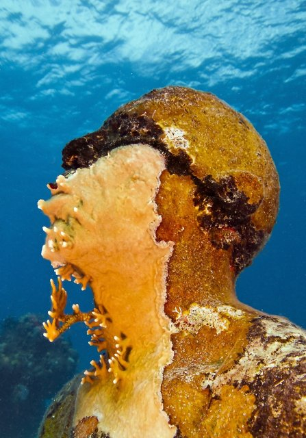 Man_on_Fire_MUSA_Cancun_Isla Mujeres_depth_8m