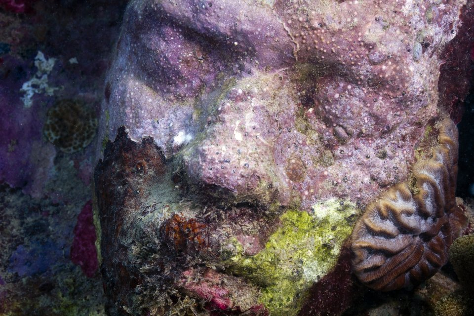 tamcc_taylor_sculpture_Moliere_Sculpture_Park_Grenada