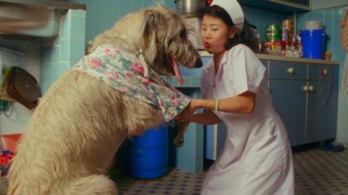 Shirkers-film-dog-nurse