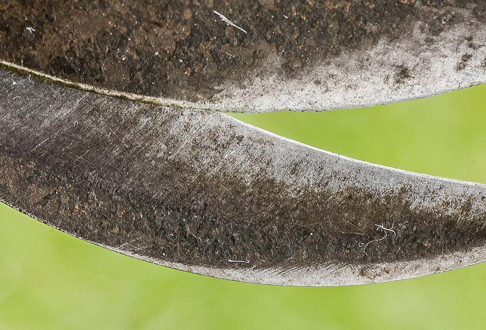 Zahradnické nůžky se zřejmým mechanickým opotřebením, které vypadá velmi podobně jako u klepítek spongobiotických krevet.
