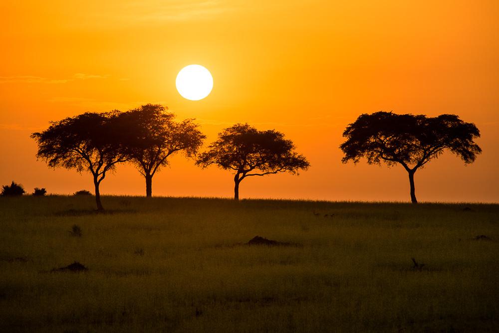 Východ slunce fotografovaný ze střechy jedoucího auta. Trefit kompozici nepřekrývajících se stromů na horizontu bylo vzhledem k rychlosti hodně veliké štěstí. Nikon D610, Sigma 300 mm f/2,8 APO EX DG HSM, čas 1/1000 s, clona f/6,3, ISO 100, bez korekce expozice
