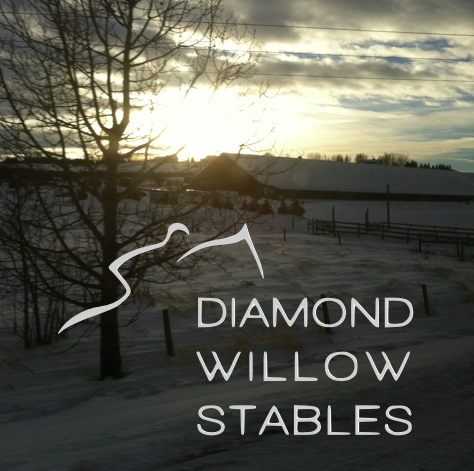 Diamond Willow Stables