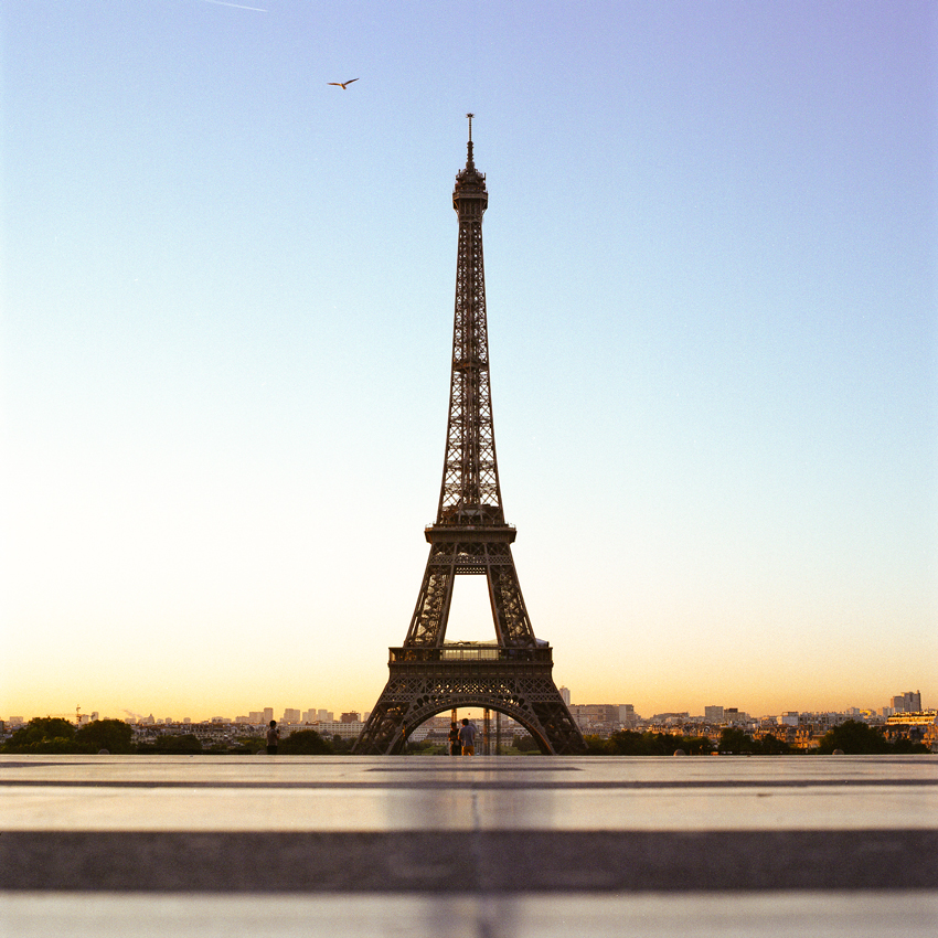 Tour-Eiffel-in-early-morning.jpg