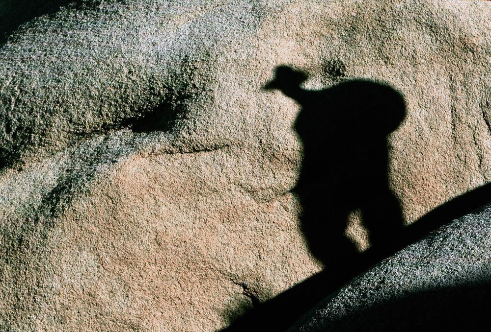 Shadow-copy-copy.jpg