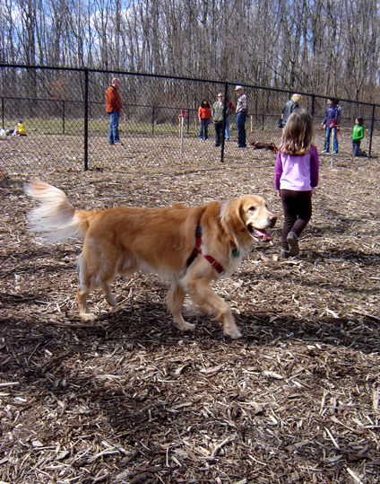 maxee_dogpark_opening.jpg