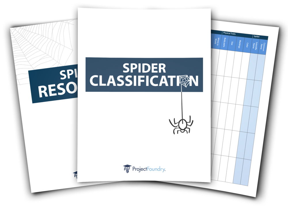 Spider Classification Form sample