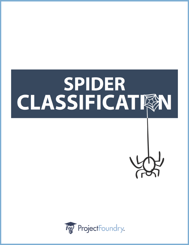 PF_Spider_Classification_DL2_cover-border-01.png