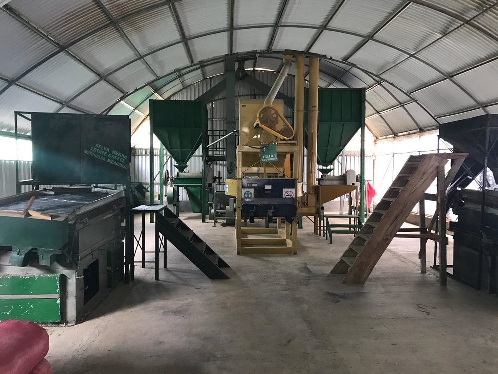 Coffee Processing Machinery