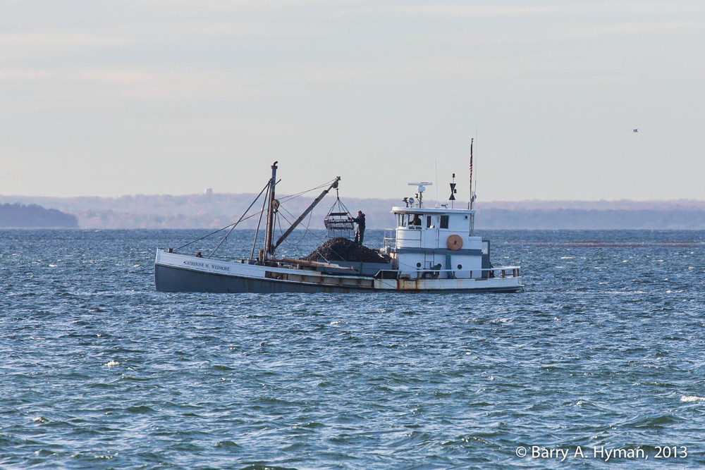 BAH-2013_11_18-2276oyster boat.jpg