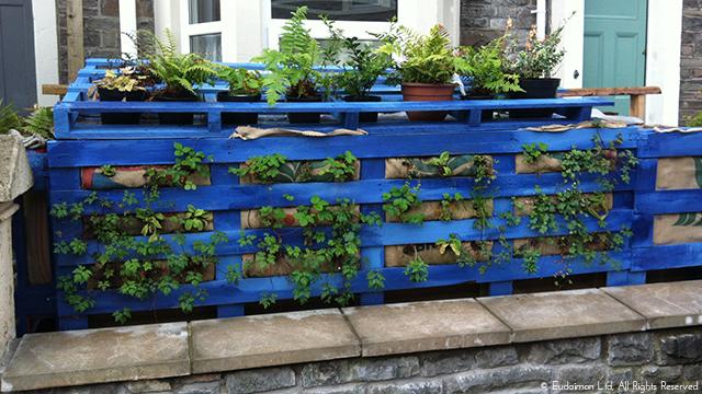 Pallet Vertical Garden — Eudaimon - Sustainable Urban Design