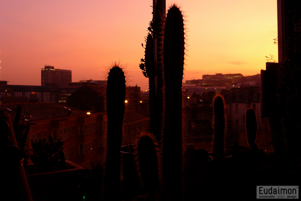 Mexican Sunrise on Stokes Croft