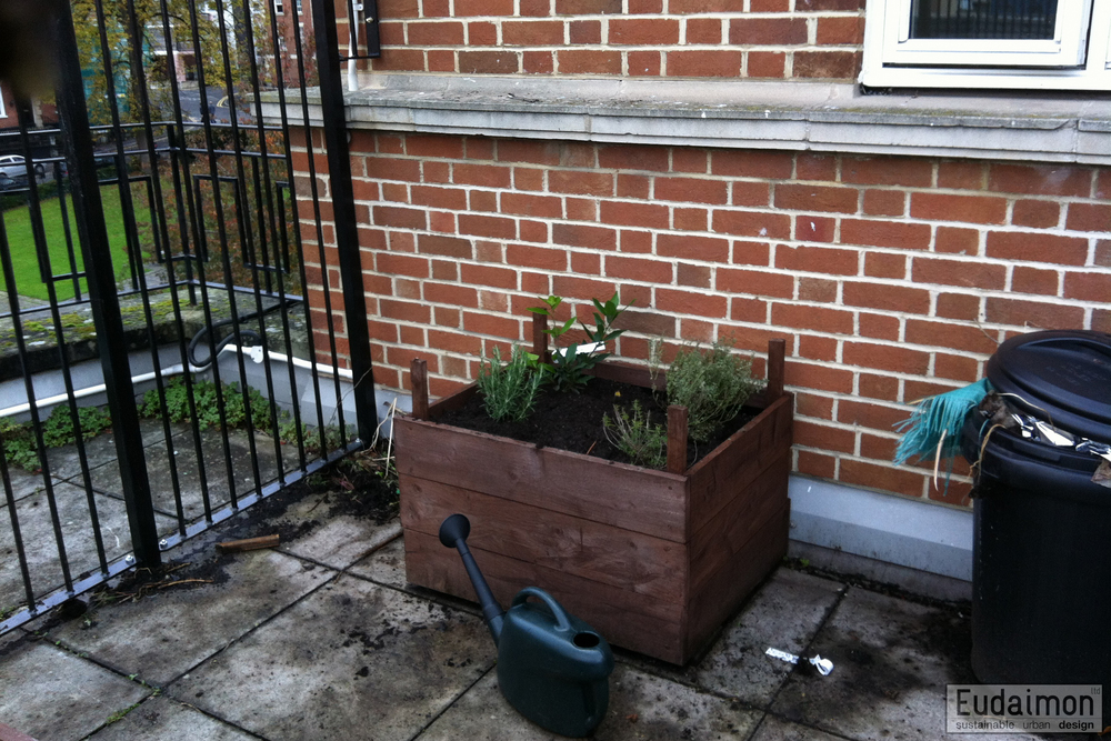 One of the Roof Terrace Planters
