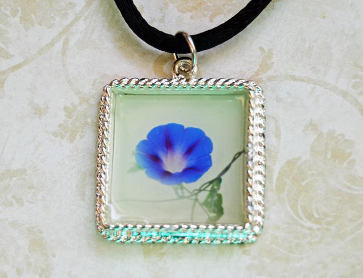 Morning Glory Photo Pendant.jpg