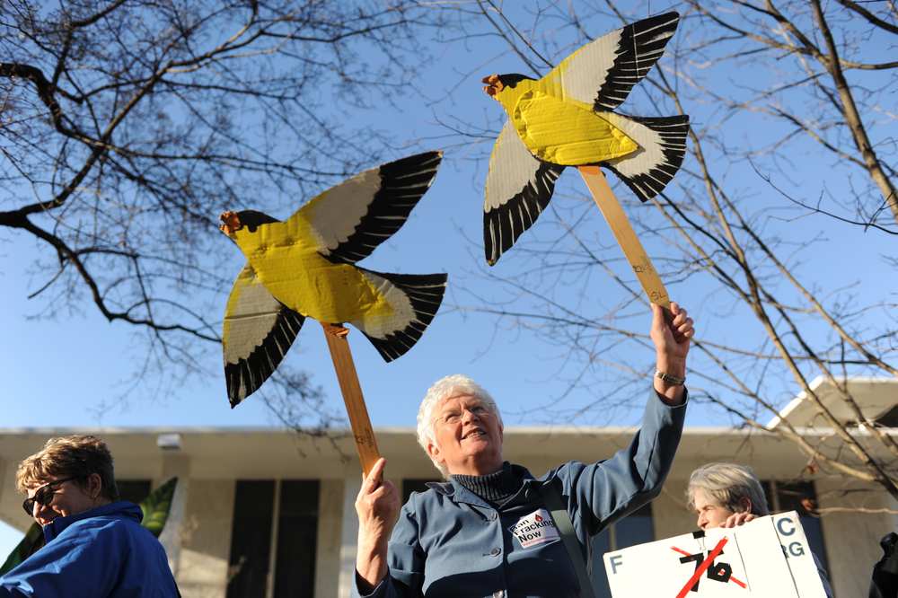 Sheila Beaudry waves handmade birds as though they were flying.
