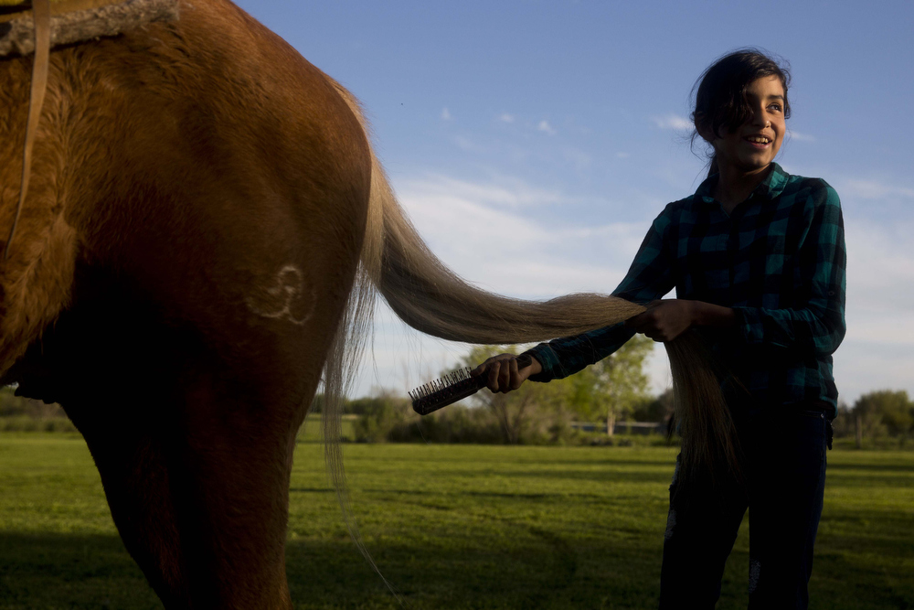 Miriam Alejandra Montecillos brushes through a horse's tail before practice at El Rancho Unico in Atascosa, Texas on March 26, 2015.  The girls are responsible for the care of the horses, even if the horses are not their own.  The cleanliness and care of the horses is as important as the presentation of the girls' tradition tack and dress.