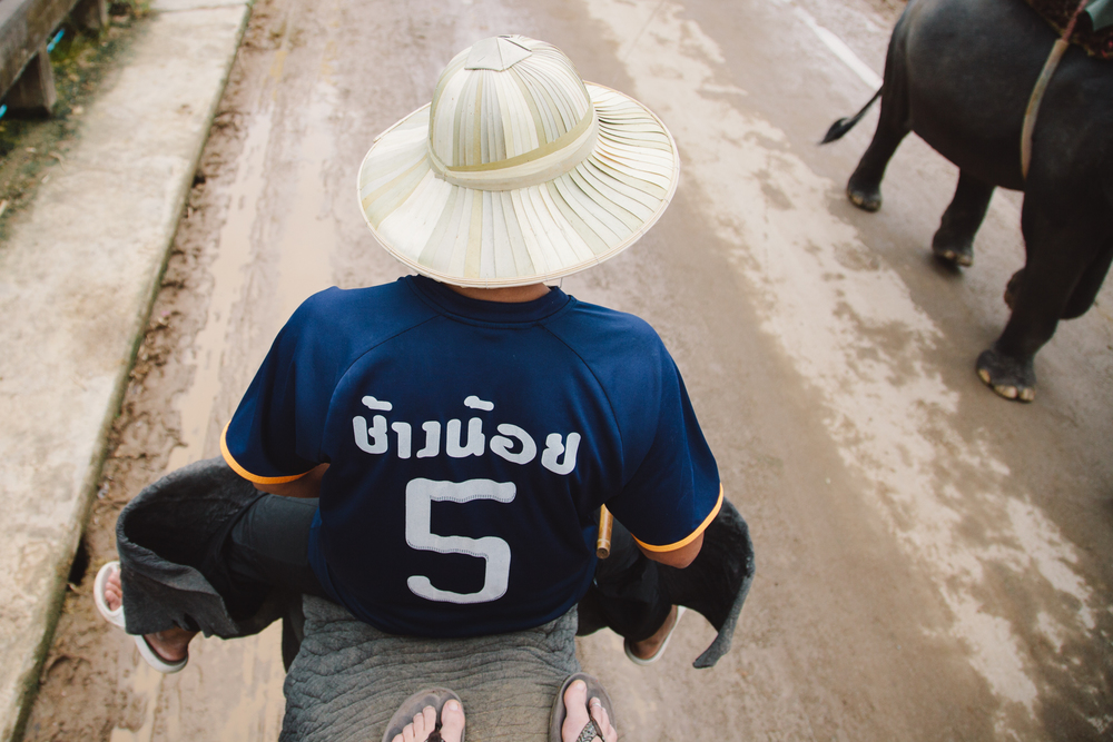 Thailandweb-39.jpg