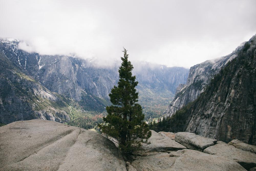 Yosemite-35.jpg