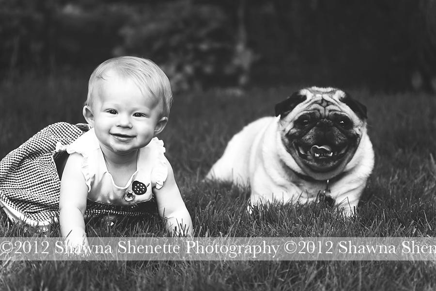 Massachusetts Baby Photographer | Shawna Shenette Photography
