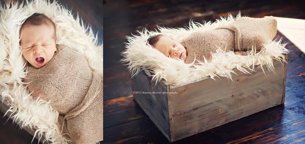 massachusetts newborn photographer baby boy central ma newborn baby boy photos collage millbury auburn sutton worcester