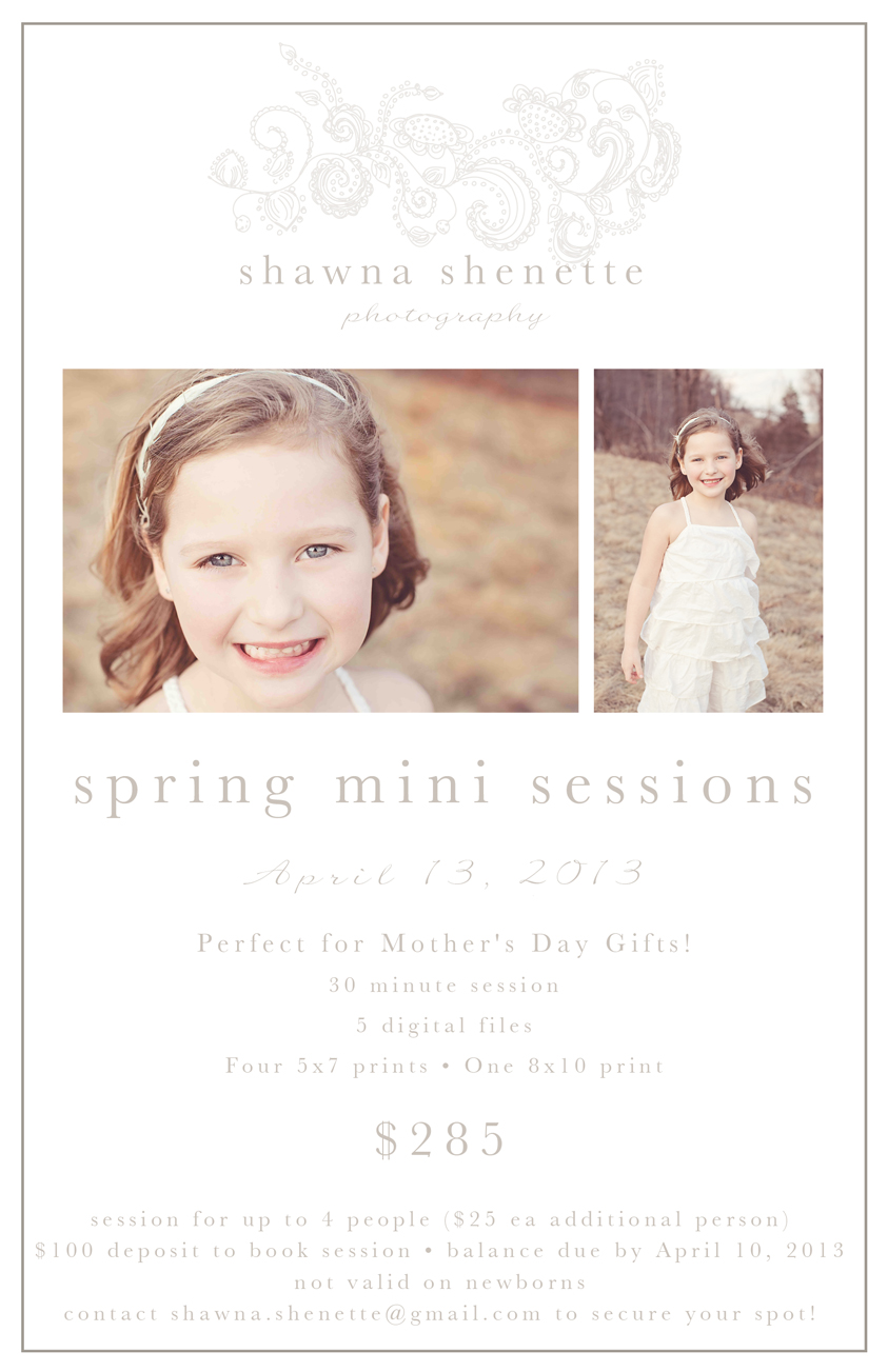 Massachusetts Worcester Spring Mini Sessions 2013 Child Family Outdoor Photographer