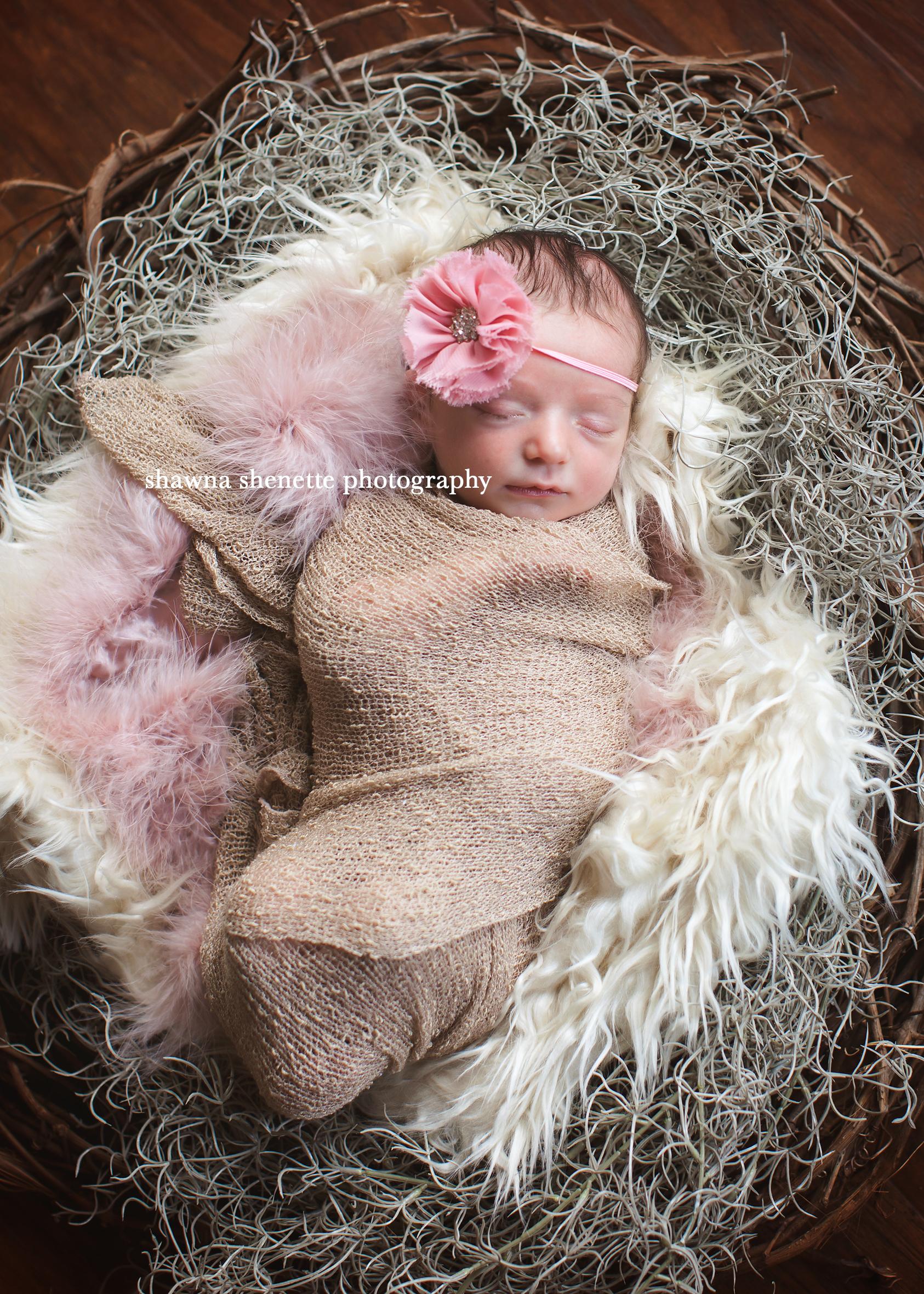 Massachusetts Best Newborn Photographer Premier Newborn Baby Photographer in Massachusetts
