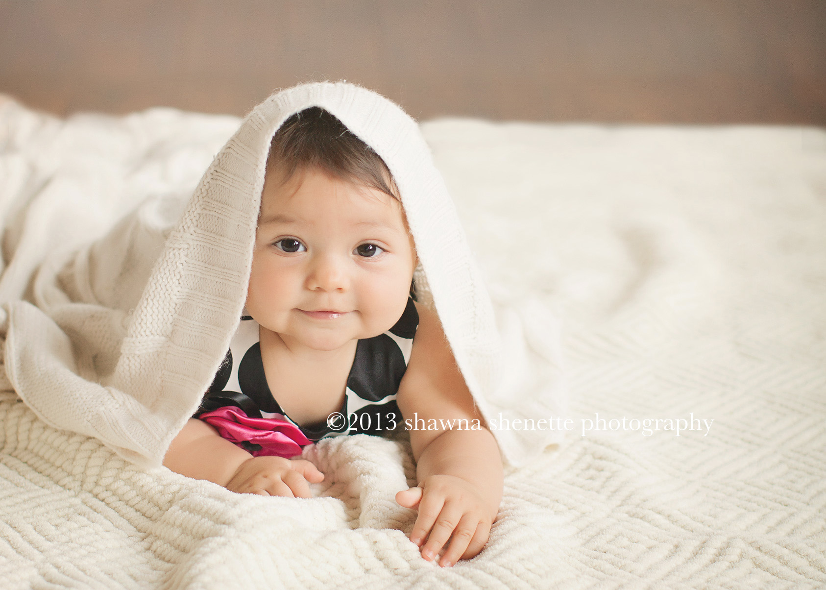 Massachusetts Baby Girl Portraits 6 month Photos Worcester Millbury Auburn Grafton