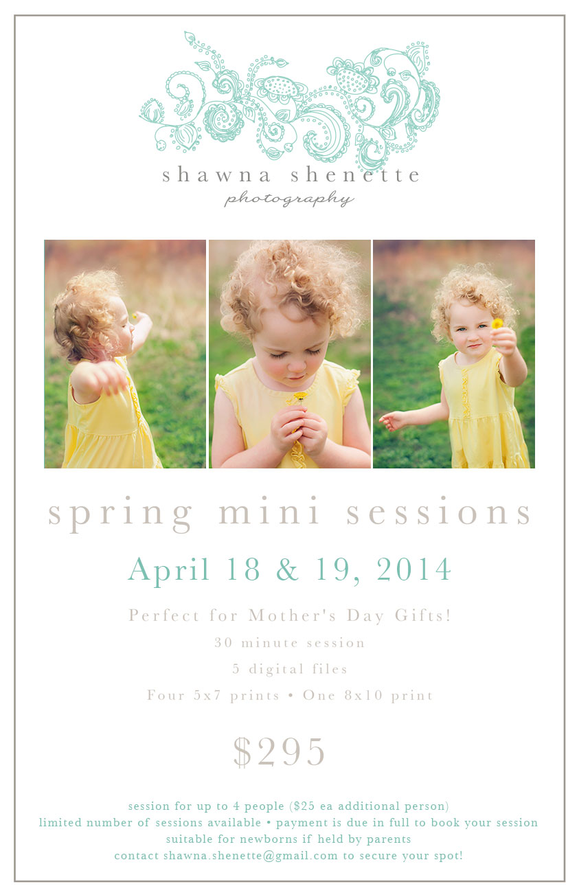 2014 Spring Outdoor Mini Sessions Millbury, MA Photographer Central MA Auburn Worcester Grafton Oxford Sutton