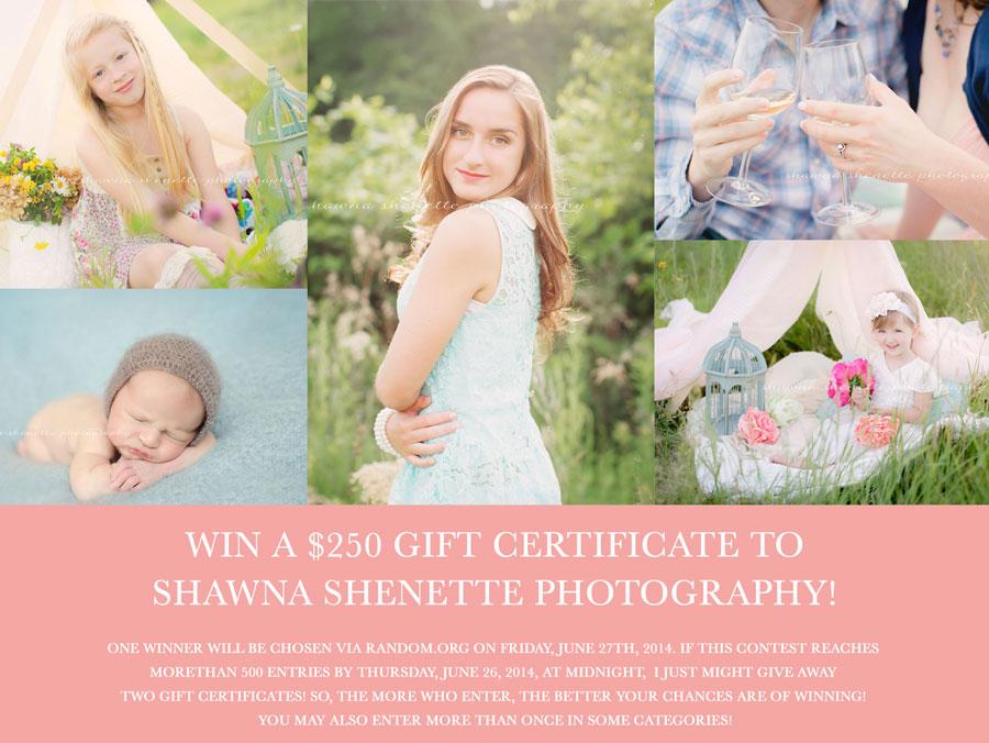 Millbury MA Child Photographer Newborn Photos Worcester Central MA Wedding Photography Boston Outdoor Photos