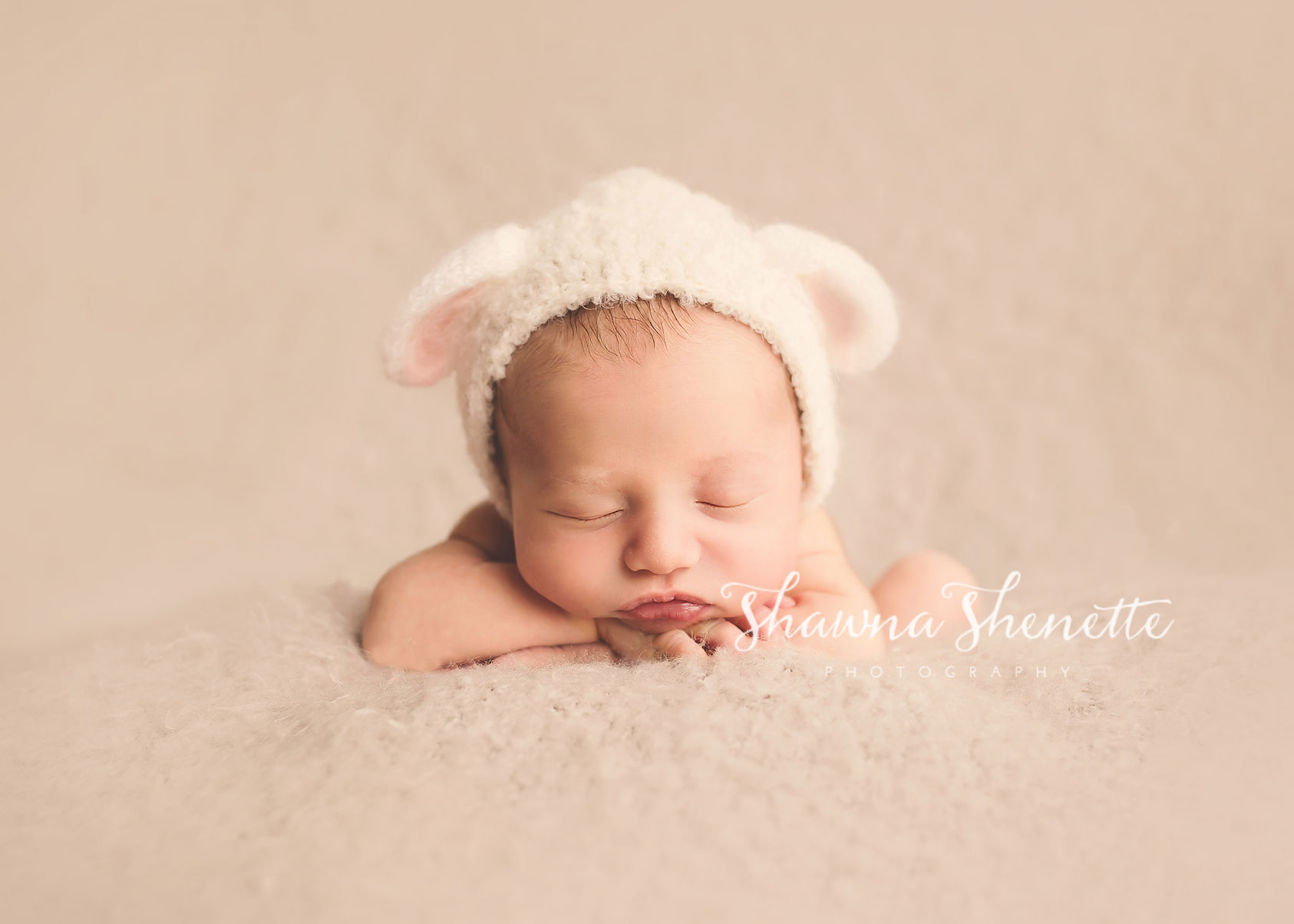 Worcester MA Newborn Photographer Boston MA Baby Boy Photos