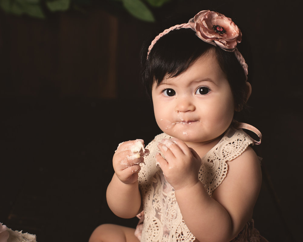 Worcester_cake_smash_photographer_boston_baby_girl_photos_one_year_portraits2.jpg