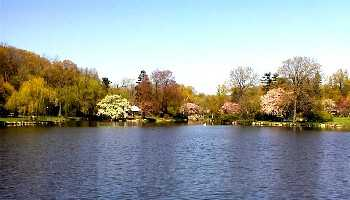 Binney_Pond_May_3_2000.jpg
