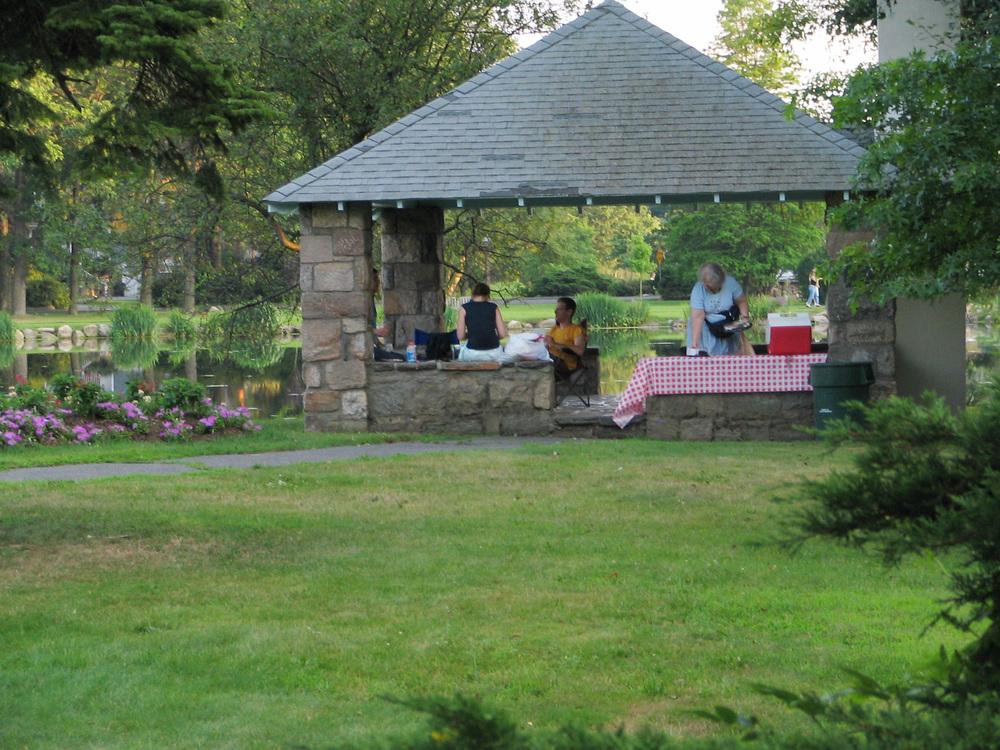 IMG_7144 Paviliion picnic 8+.JPG