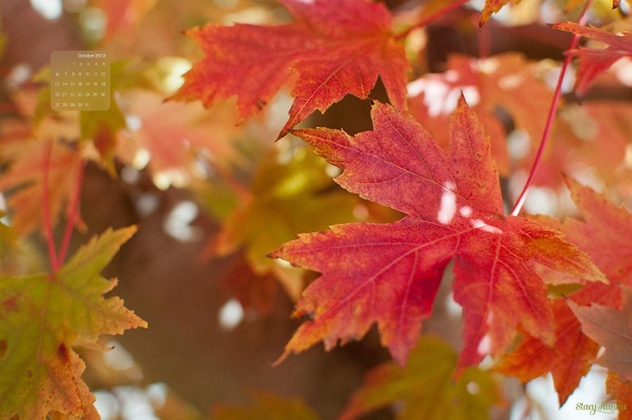 desktop background october 2013 � stacy hanna peoria