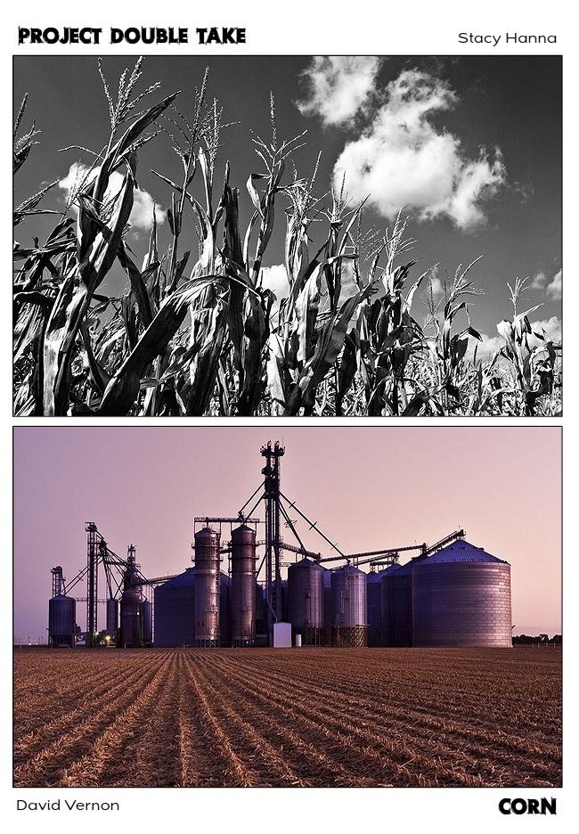 Corn_PDT.jpg